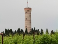 Torre di San Martino from Vineyards 1